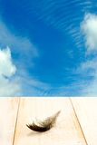 Bird feather on wooden table on blue sky background Royalty Free Stock Photo