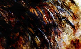 Bird  Feathers, black, gold, white color background on paper, rust effect Royalty Free Stock Photos