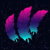 Bird feathers on a flickering background. Vector illustration Stock Photos