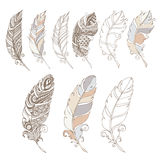 Bird feathers in pastel colors set. Pen bird hand draw pastel Stock Images
