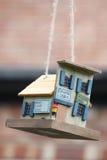 Bird Feeder. A hanging wooden bird feeder made to look like a shop Stock Photography