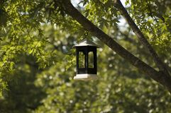 Bird feeder. Black and white bird feeder Royalty Free Stock Photography