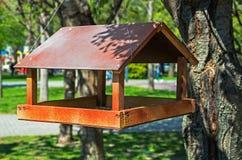 Free Bird Feeder Stock Images - 147540044