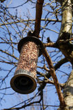 Bird feeder. Hanging from a tree in winter stock photography