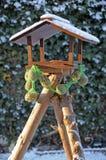 Bird feeder Royalty Free Stock Image