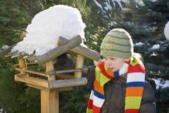 Bird feeder Stock Images