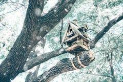 Bird feeder, birdhouse in winter stock images