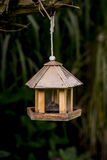 Bird feeder an dark background. Hanging from a tree stock photo
