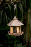 Bird feeder an dark background. Hanging from a tree Stock Photo