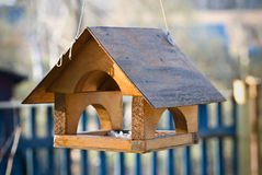 Bird feeder Royalty Free Stock Photo