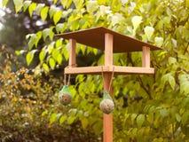 Bird feeder. In the garden Royalty Free Stock Photography
