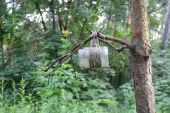 A bird feeder from a glass jar Royalty Free Stock Photo