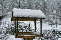 Bird feeder with hanged bacon rind covered with snow. Wooden bird feeder with hanged bacon rind covered with snow, garden in background stock photos