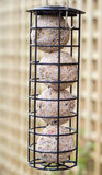 Bird feeder Stock Images