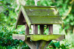 Bird feeder house shaped garden accessory weathered covered in moss Stock Images