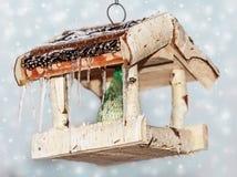 Bird feeder Royalty Free Stock Images