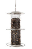 Bird feeder Stock Image