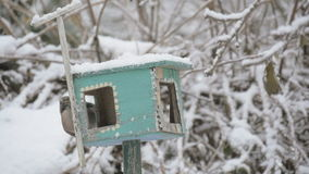 A bird in the feeder and pecks grain ,slow motion, snowflakes falling on the birdhouse. Feeding birds in the winter. Feeding birds at winter season with wooden stock video