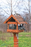 Bird Feeder and Pigeons royalty free stock photography
