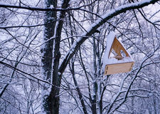 Bird feeder on snowy tree branch Stock Photography