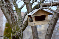 The bird feeder Stock Images