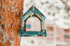 Bird feeder on a tree with blurred background royalty free stock photo
