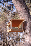 Bird feeder on a tree. Empty small wooden bird feeder on a tree Royalty Free Stock Images