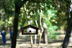 Bird feeder on a tree with a bird placed in the city Park among the trees on blurred natural background with silhouettes of people Royalty Free Stock Images