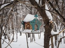 Bird feeder on a tree under newly fallen snow in Novosibirsk, Russia.  stock photography