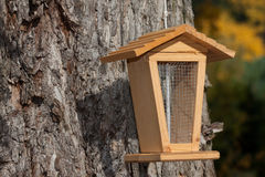 Bird feeder on a tree Royalty Free Stock Images