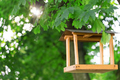 Bird feeder trees Stock Images
