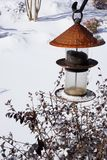 Bird feeder in winter after first snow Stock Photo