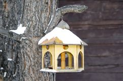 Bird feeder in the winter forest covered with snow stock photography