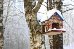 Bird Feeder in Winter Forest stock photos