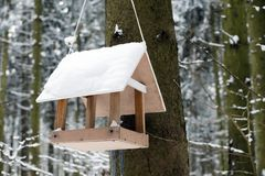 Bird feeder in winter park. Wooden bird feeder with snow on the roof in winter park with trees Royalty Free Stock Photo