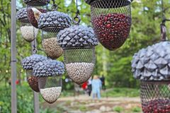 Bird feeders in the form of acorns in the natural Park. Unusual bird feeders in the form of acorns in a natural Park on a background of green trees royalty free stock images