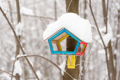 Bird feeders. Hanging on a tree branch in winter forest Stock Photography
