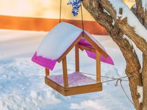Bird feeders. Hanging from a tree in a winter park royalty free stock photography