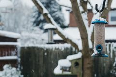 Bird feeders outside in a garden in winter, covered in snow. Selective focus Stock Images