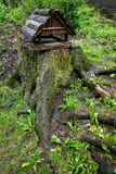 Bird feeders on the stump. Nature close-up photography stock images