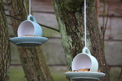 Bird Feeders - Tea for Two. Cup and Saucer bird feeders hanging from trees royalty free stock photo