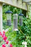 Bird feeders. Three bird feeders hanging on a trellace royalty free stock photography