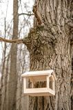 Bird feeders. tree house for the birds.  Royalty Free Stock Photo
