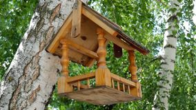 Bird feeders. tree house for the birds, cheerful apartment. Bird feeders. tree house for the birds, cheerful apartment stock footage