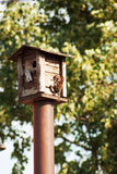Bird feeders. tree house for the birds feeding her yound ones Royalty Free Stock Image