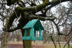 Bird feeders Royalty Free Stock Image