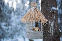 Bird feeders. In winter forest stock photos
