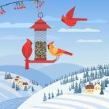 Bird feeding poster. Red cardinal birds on feeder. Birdfeeding near winter rural community. Small bird of backyard minimal cartoon design. Birds feeding by royalty free illustration
