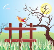 Bird on the fence. A vector illustration of the bird on the fence at the sunny day under the tree Royalty Free Stock Photo