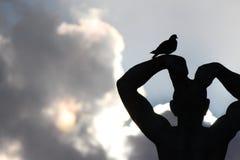 Bird on Flexing Man Stock Image